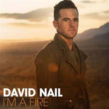 David Nail (Kiss You Tonight)