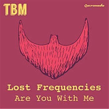 Lost Frequencies (Are You With Me)