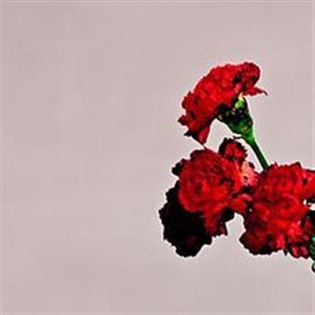 John Legend (All of Me)