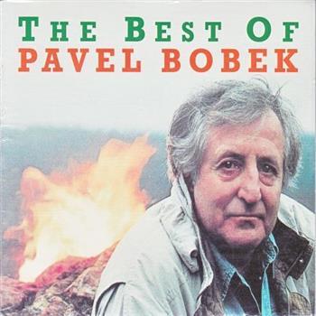 Pavel Bobek (Drž se zpátky, chlapče můj (Coward Of The County))