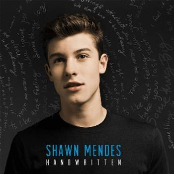 Shawn Mendes (Stitches)