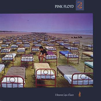 Pink Floyd (On the turning away)