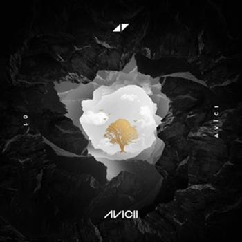 Avicii, Sandro Cavazza (Without You)