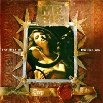 Mr. Big (Wild World)