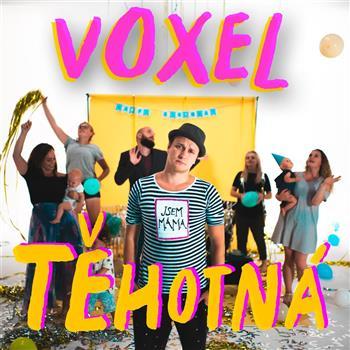 Voxel (Těhotná)